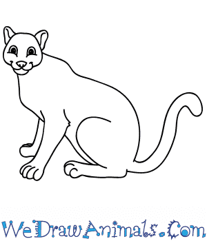 How to Draw a Cartoon Mountain Lion in 8 Easy Steps