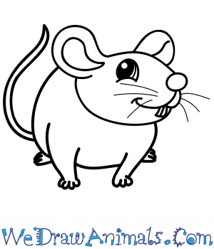 How to Draw a Cartoon Mouse in 8 Easy Steps