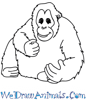 How to Draw a Cartoon Orangutan in 5 Easy Steps