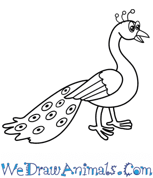 how to draw a cartoon peacock how to draw a cartoon peacock