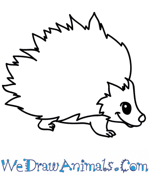 How to Draw a Cartoon Porcupine in 5 Easy Steps
