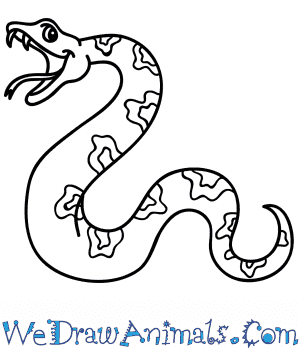 How to Draw a Cartoon Python in 5 Easy Steps