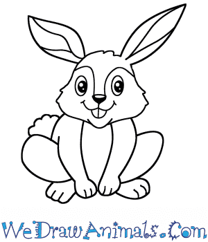 How to Draw a Cartoon Rabbit in 6 Easy Steps