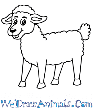 How to Draw a Cartoon Sheep in 6 Easy Steps