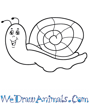 How to Draw a Cartoon Snail in 5 Easy Steps