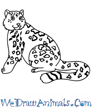 How to Draw a Cartoon Snow Leopard in 9 Easy Steps
