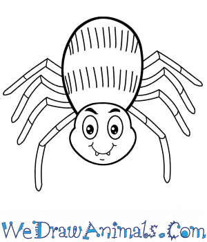 How to Draw a Cartoon Spider in 5 Easy Steps