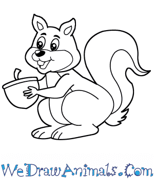 How to Draw a Cartoon Squirrel in 6 Easy Steps