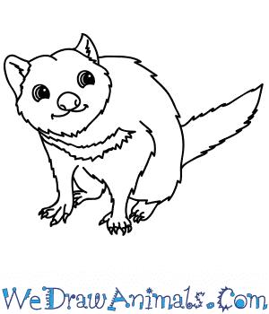 How to Draw a Cartoon Tasmanian Devil in 6 Easy Steps