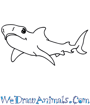 How to Draw a Cartoon Tiger Shark in 6 Easy Steps
