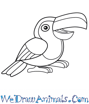 How to Draw a Cartoon Toucan in 5 Easy Steps