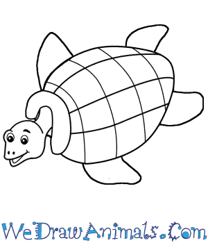 How to Draw a Cartoon Turtle in 6 Easy Steps