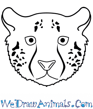 How to Draw a Cheetah Face in 10 Easy Steps