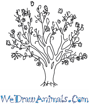 How to Draw a Cherry Tree in 6 Easy Steps