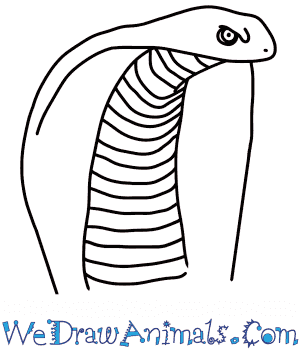 How to Draw a Cobra Head in 6 Easy Steps