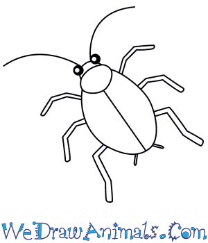 How to Draw a Cockroach For Kids in 5 Easy Steps