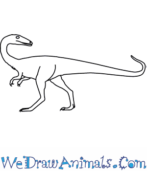 How to Draw a Coelophysis in 6 Easy Steps