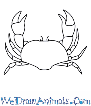 How to Draw a Crab in 10 Easy Steps