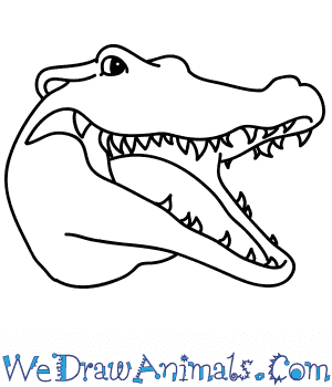 How to Draw a Crocodile Face in 10 Easy Steps
