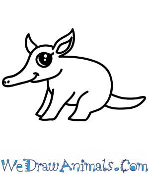 How to Draw a Cute Aardvark in 6 Easy Steps