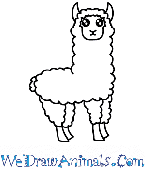 How to Draw a Cute Alpaca in 6 Easy Steps