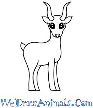 How to Draw a Cute Antelope in 7 Easy Steps