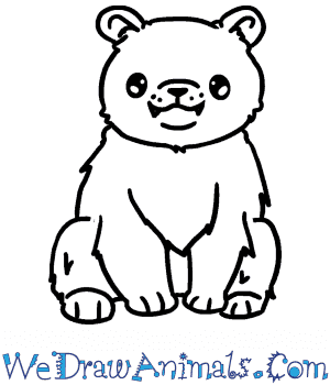 How to Draw a Cute Black Bear in 4 Easy Steps