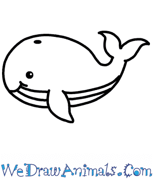 How to Draw a Cute Blue Whale in 5 Easy Steps