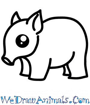 How to Draw a Cute Boar in 5 Easy Steps