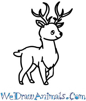 How to Draw a Cute Buck Deer in 5 Easy Steps