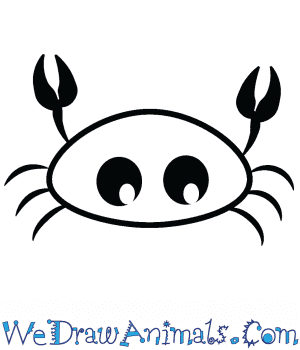 How to Draw a Cute Crab in 4 Easy Steps