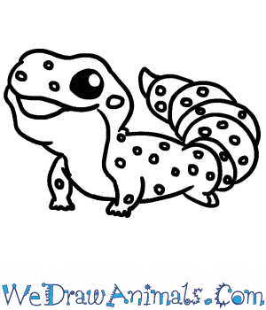 How To Draw A Cute Gecko