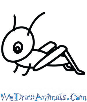 How to Draw a Cute Grasshopper in 3 Easy Steps