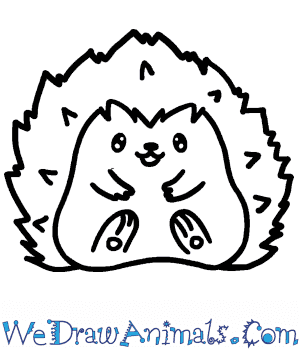 How to Draw a Cute Hedgehog in 5 Easy Steps