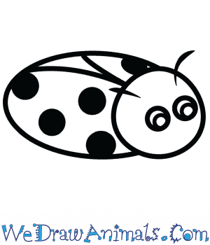 How to Draw a Cute Ladybug in 3 Easy Steps