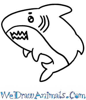 How to Draw a Cute Megalodon Shark in 4 Easy Steps