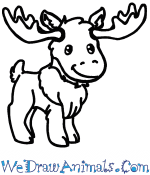 How to Draw a Cute Moose in 5 Easy Steps