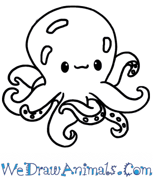 How to Draw a Cute Octopus in 4 Easy Steps