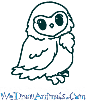 How to Draw a Cute Owl in 4 Easy Steps