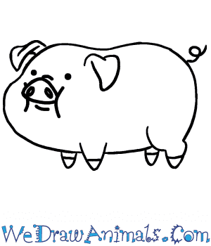 How to Draw a Cute Pig in 5 Easy Steps