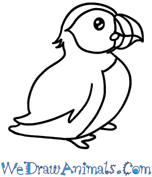 How to Draw a Cute Puffin in 4 Easy Steps