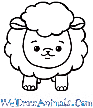 How To Draw A Cute Sheep