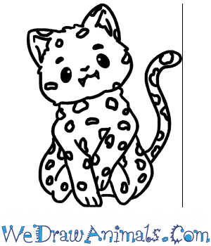 How to Draw a Cute Snow Leopard in 6 Easy Steps