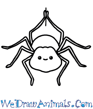 How to Draw a Cute Spider in 7 Easy Steps