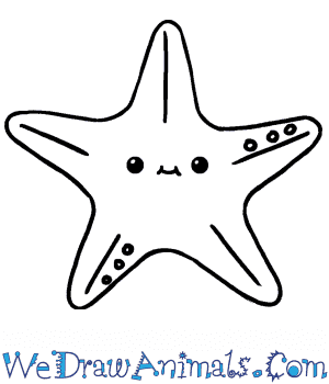 How to Draw a Cute Starfish in 5 Easy Steps