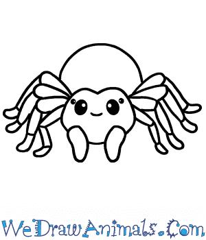 How to Draw a Cute Tarantula in 7 Easy Steps