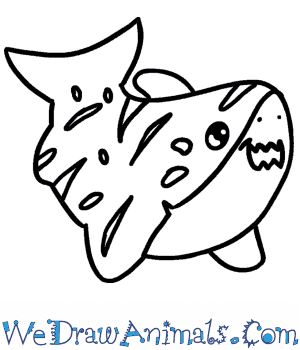 How to Draw a Cute Tiger Shark in 6 Easy Steps
