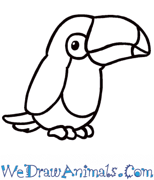 How to Draw a Cute Toucan in 7 Easy Steps