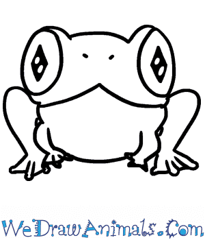 How to Draw a Cute Tree Frog in 5 Easy Steps