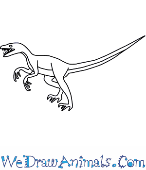 How to Draw a Deinonychus in 6 Easy Steps